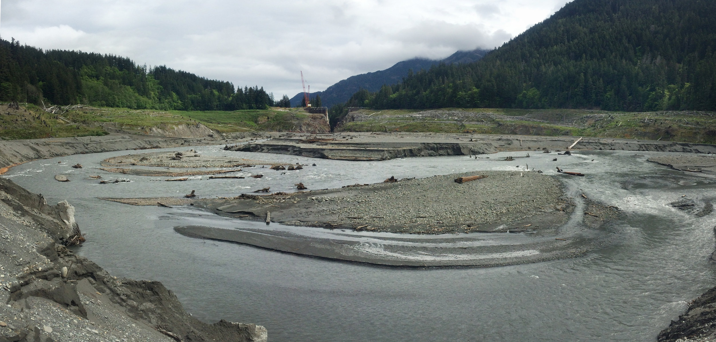 Dams are a powerful illustration of how we harness nature's power. But what happens when we give that power back? The Elwha River, post dam removal  .  © Emily Eidam (used with permission)