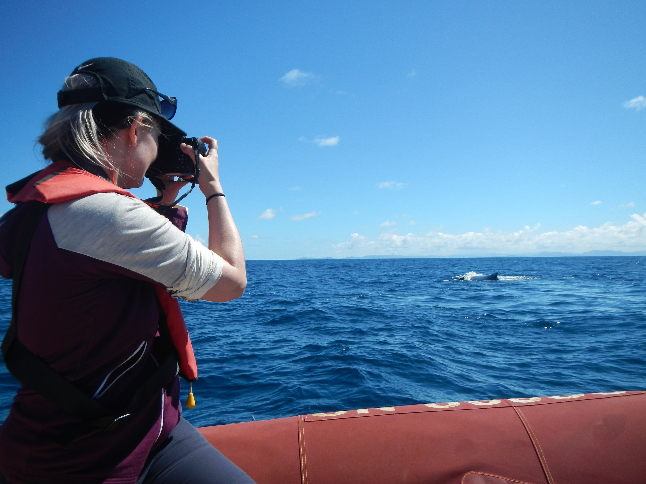 Leena Riekkola is satellite tracking humpback whales during their annual migration.  © Guillaume Chero