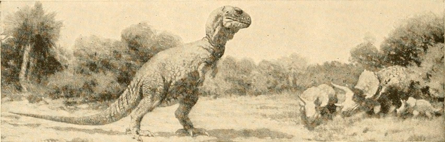 This 1917 drawing of a T. rex and a family of Triceratops depicts dinosaurs as plodding and slow. Most paleontologists believed that dinosaurs simply went extinct due to failure to adapt.   Internet Book Archive Images/Wikimedia Commons  (Flickr API)