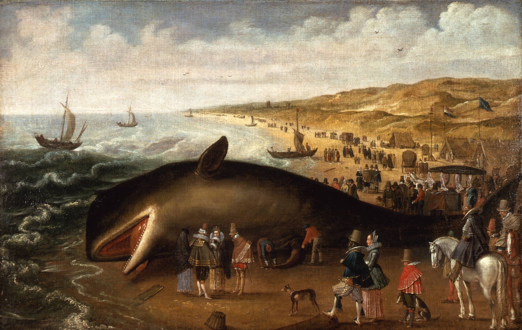 Whales have fascinated human onlookers since antiquity, but as this 1617 painting shows, misconceptions about whale anatomy persisted for centuries .  Esaias van de Velde/Wikimedia Commons  (public domain