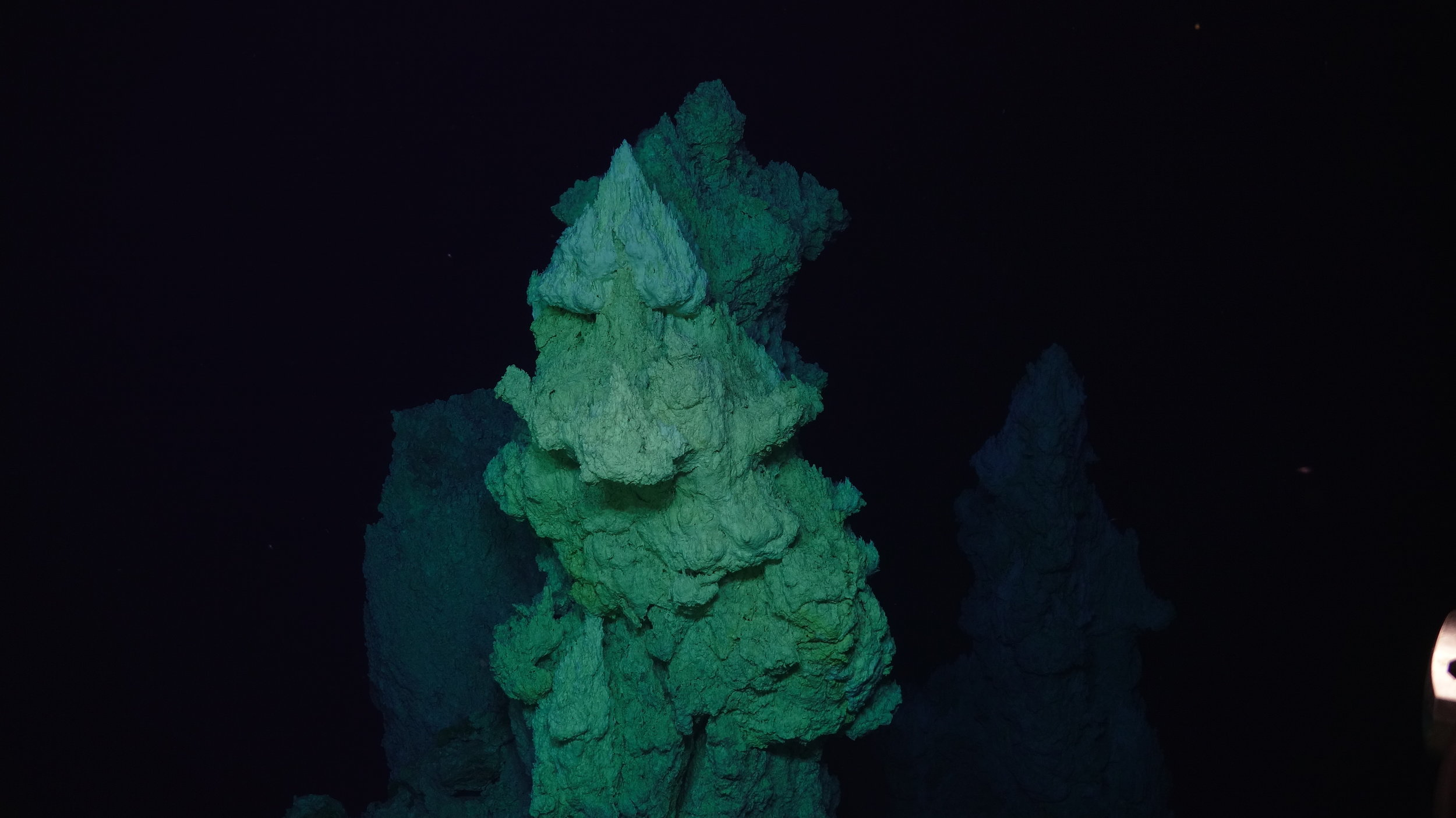 The Lost City vent field sits on the summit of a submarine mountain.  Susan Lang, U. of S.C. / NSF / ROV Jason / 2018 © Woods Hole Oceanographic Institution (used with permission)