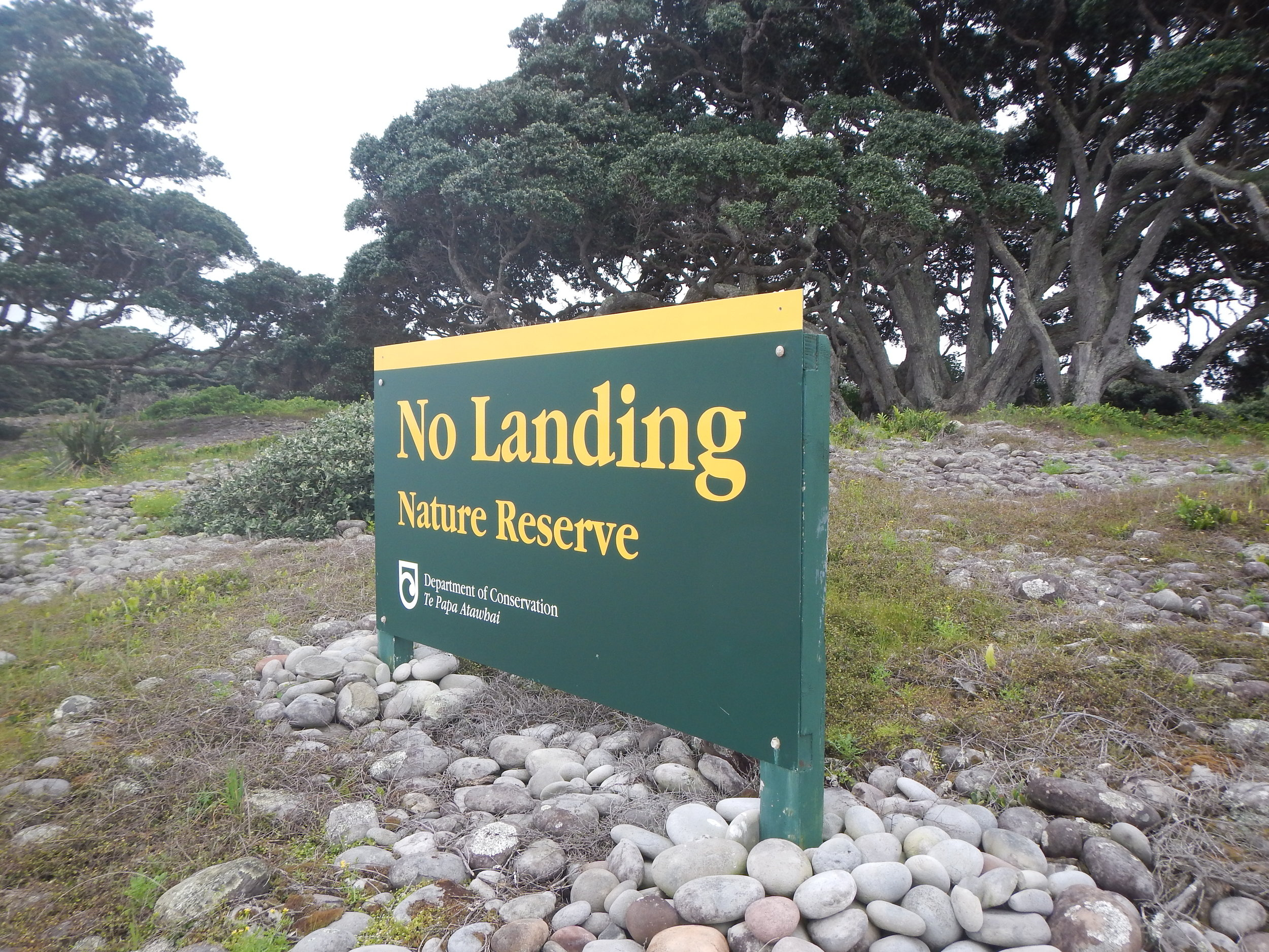 Little Barrier Island has strict quarantine procedures and visitor restrictions. ©  Eli Sooker
