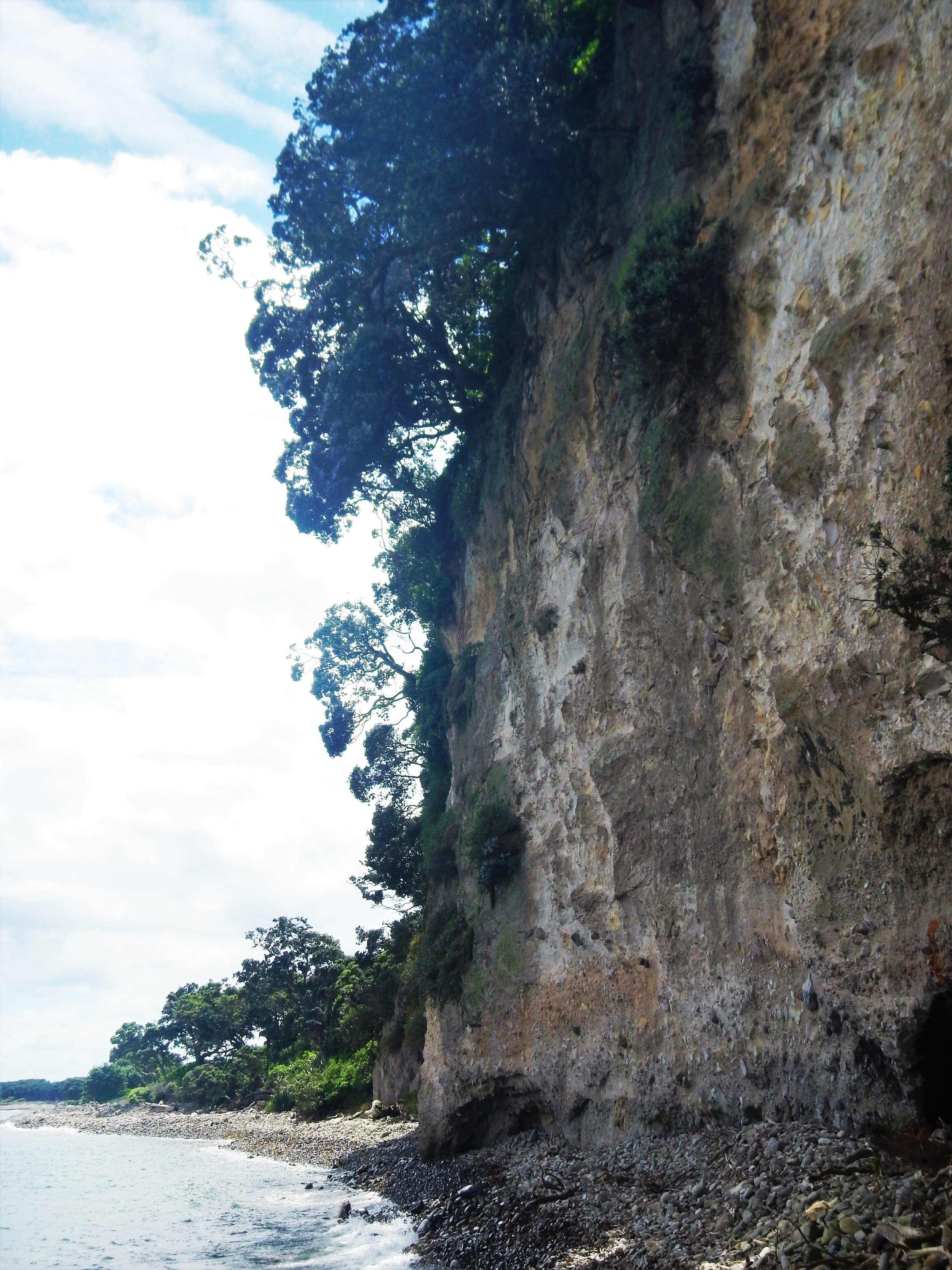 Steep cliffs are a prominent feature of the island. © Eli Sooker