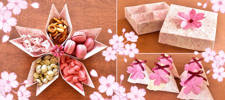 Sakura Craft Course Hero.jpg
