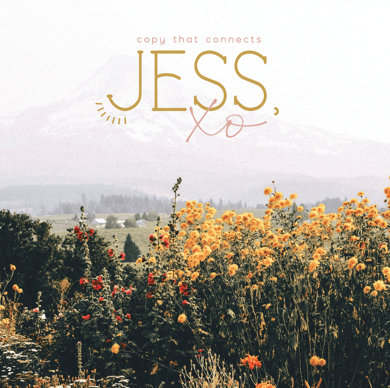 Jess, XO Rebrand Wildflower Effect