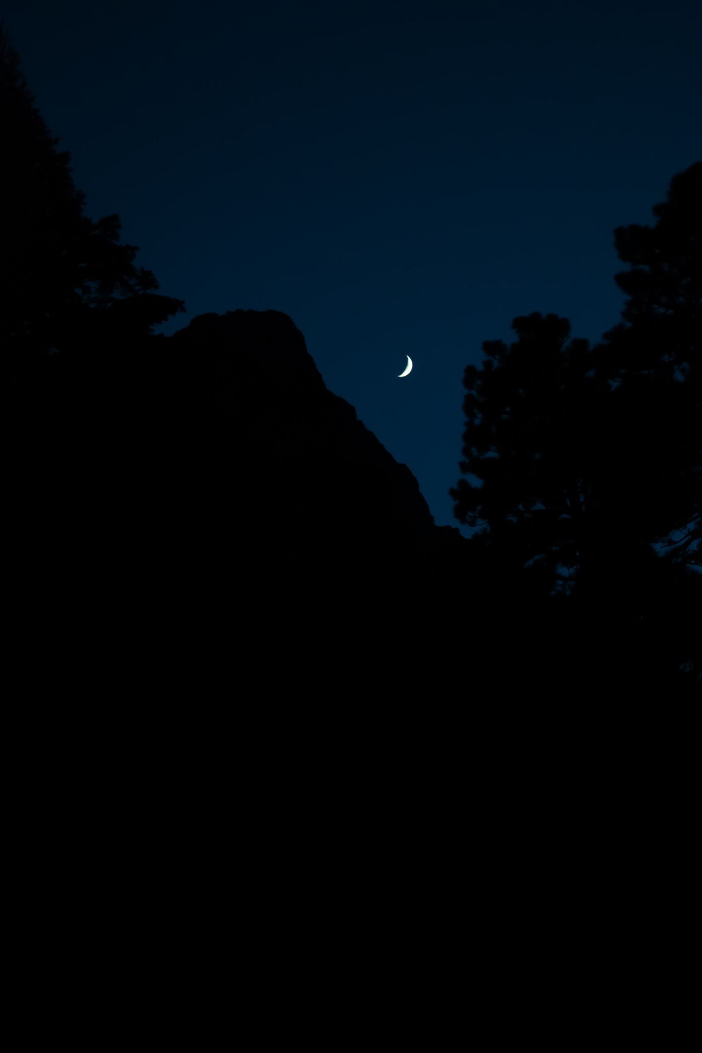 wishing I could have been practicing some star shooting this night but instead the moon was perfectly placed near Cathedral rock and some dope trees. pictures don't really do it justice especially since I am still learning the hang of this camera thang but we learning.