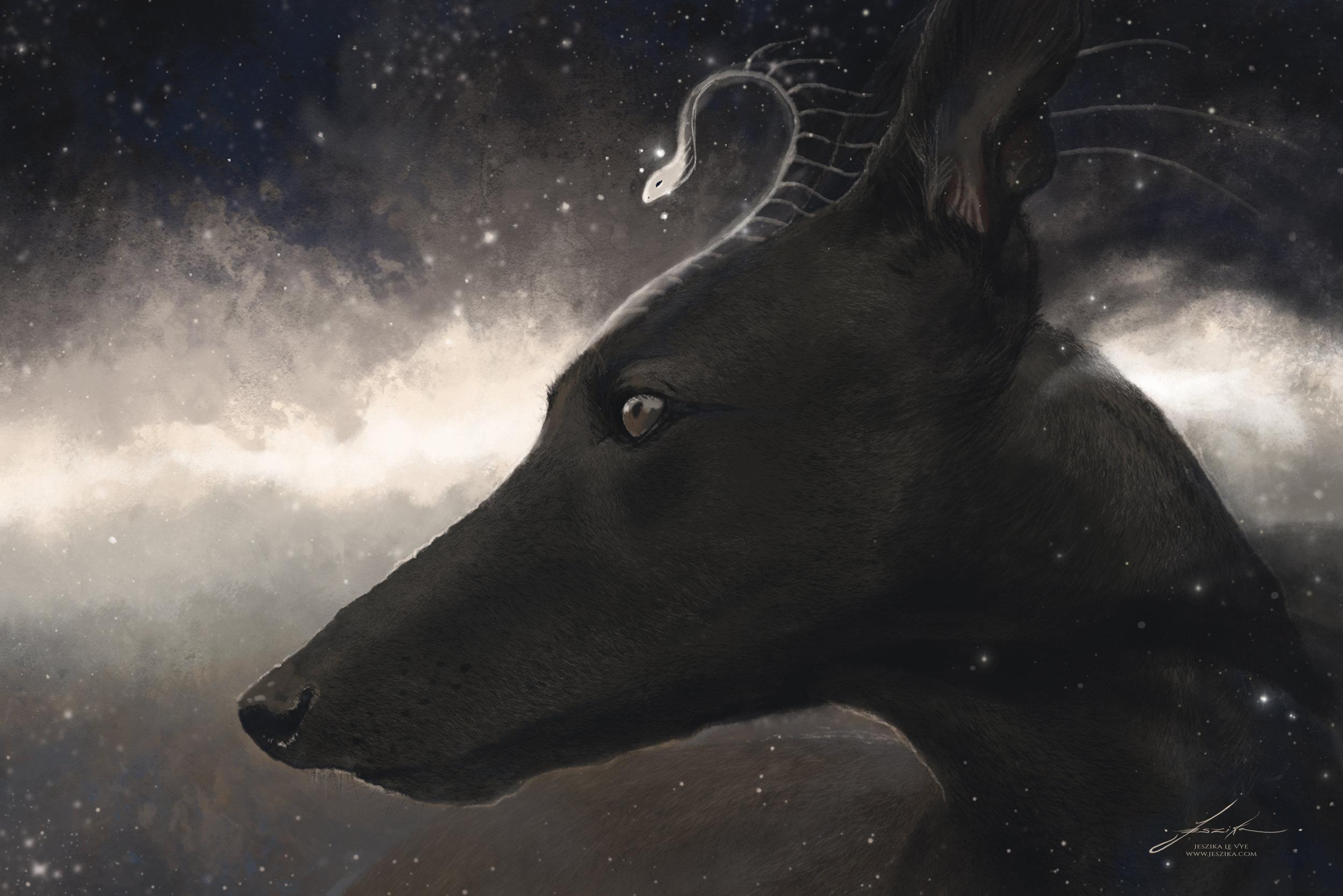 Anubis - Fangs like Stars