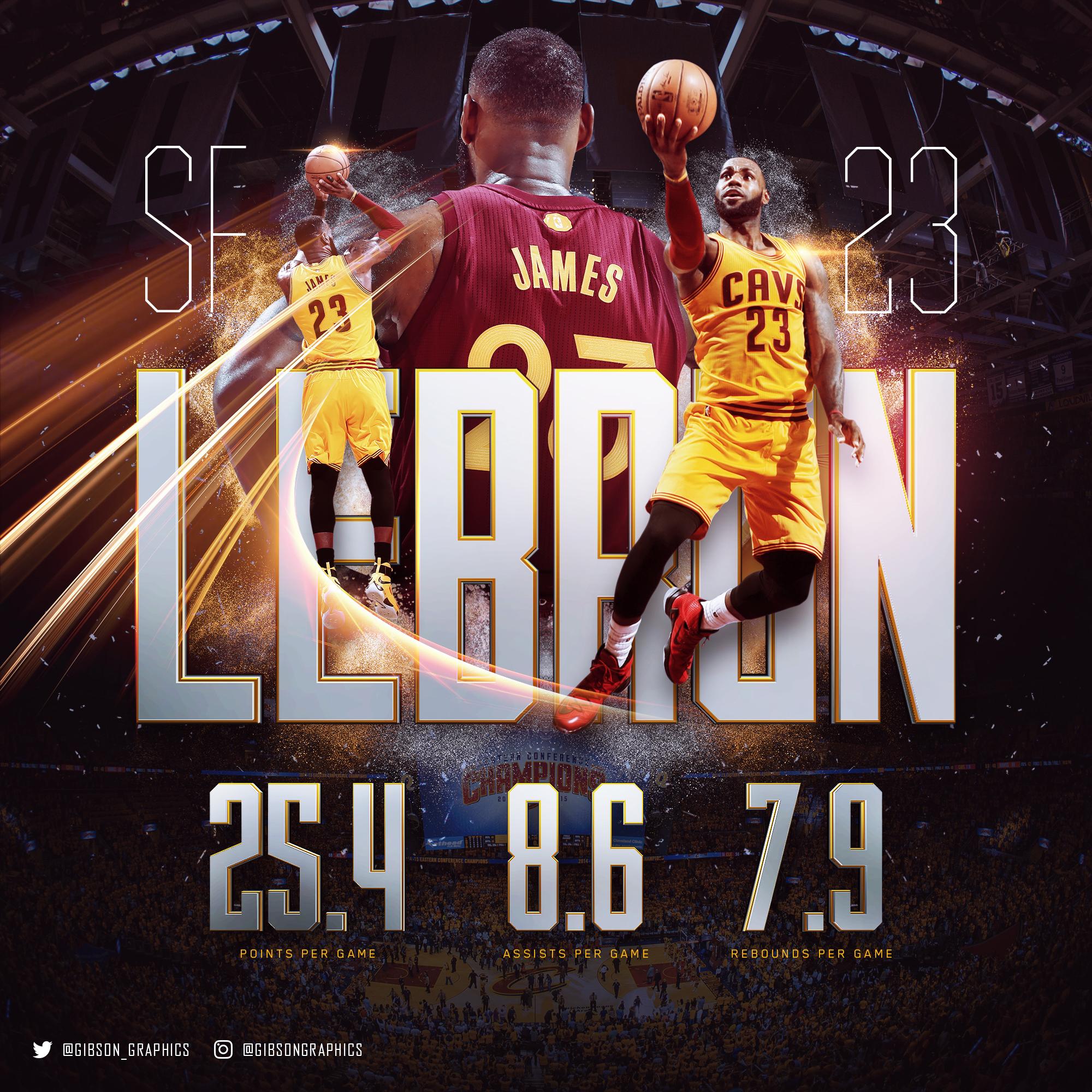 LeBron James 2016 NBA Infographic