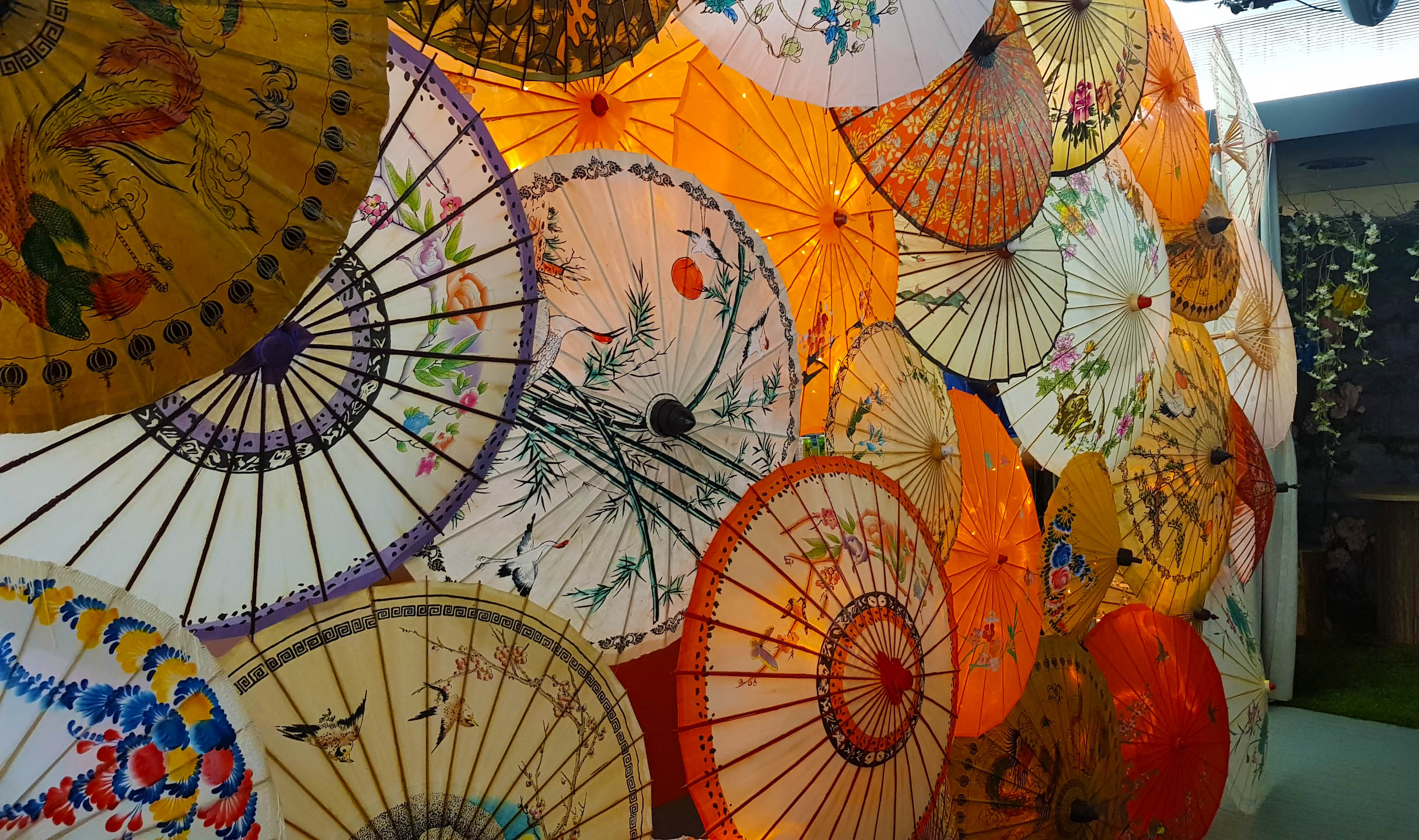 4 parasols.jpg