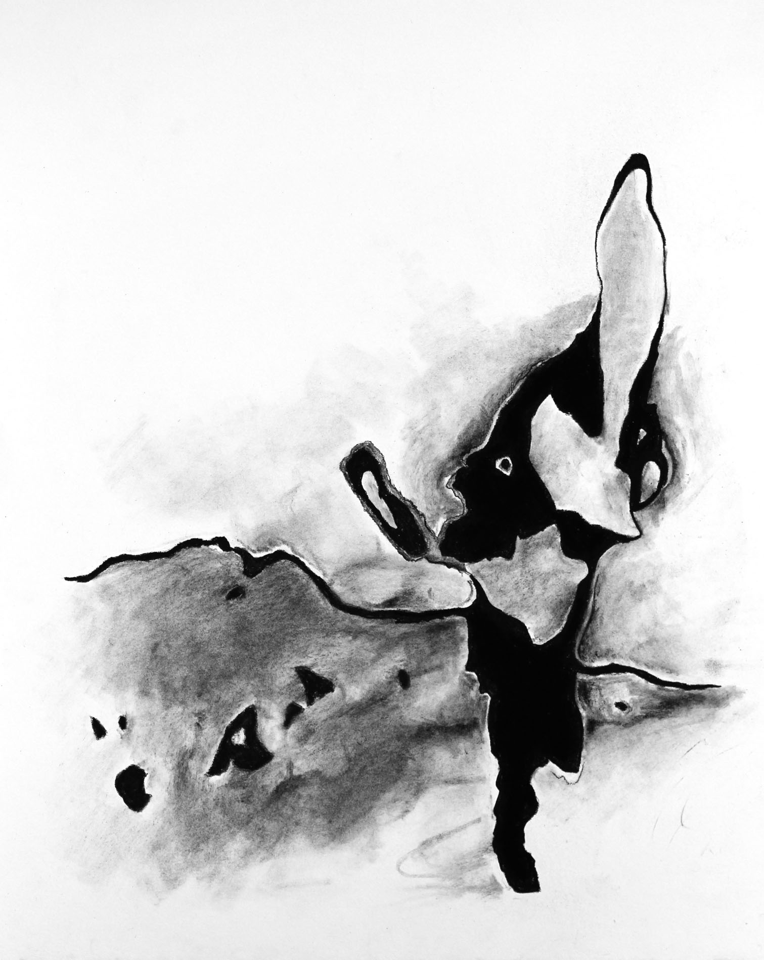 JForan_drawing2.jpg