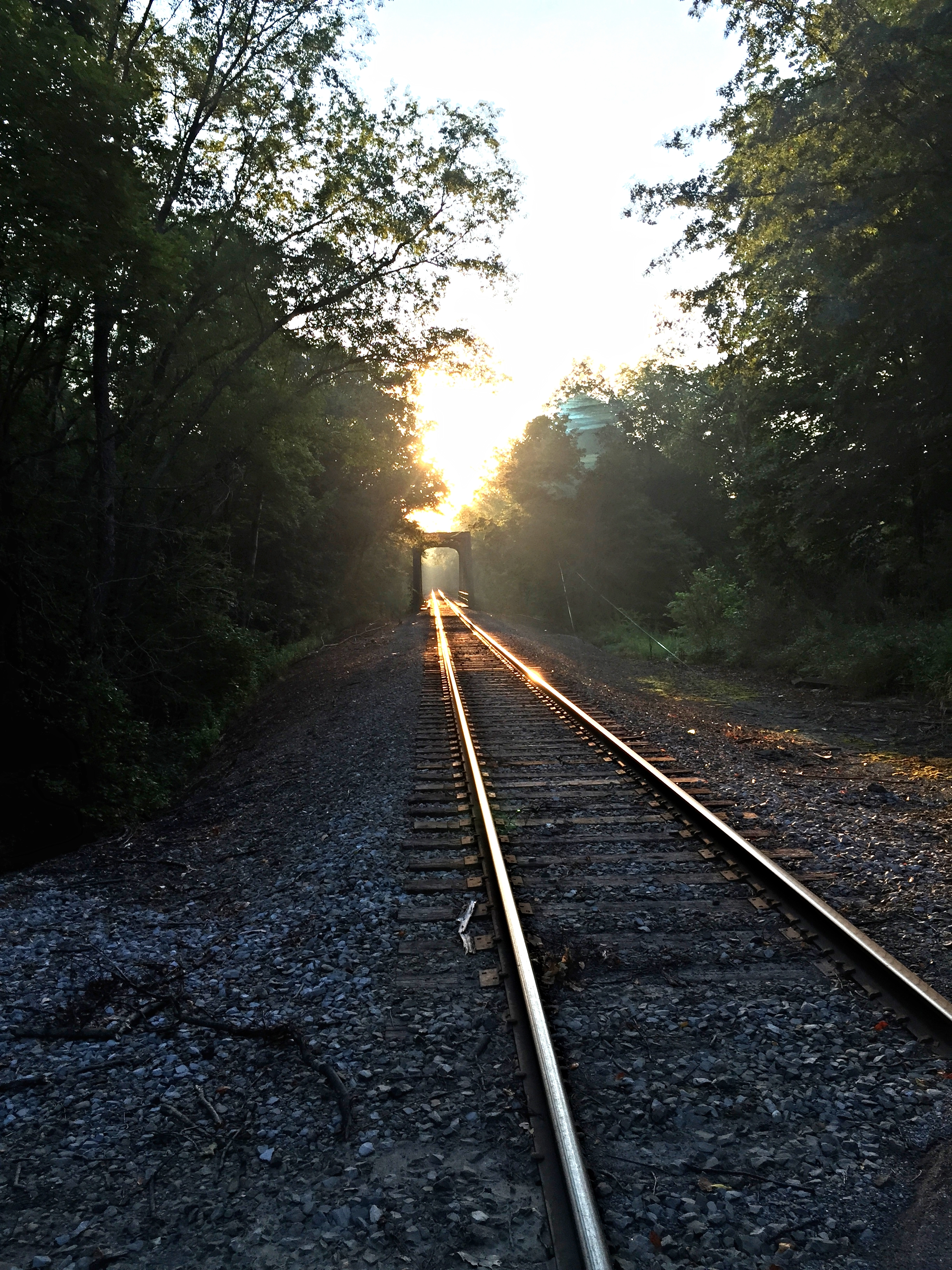 Train tracks in the morning