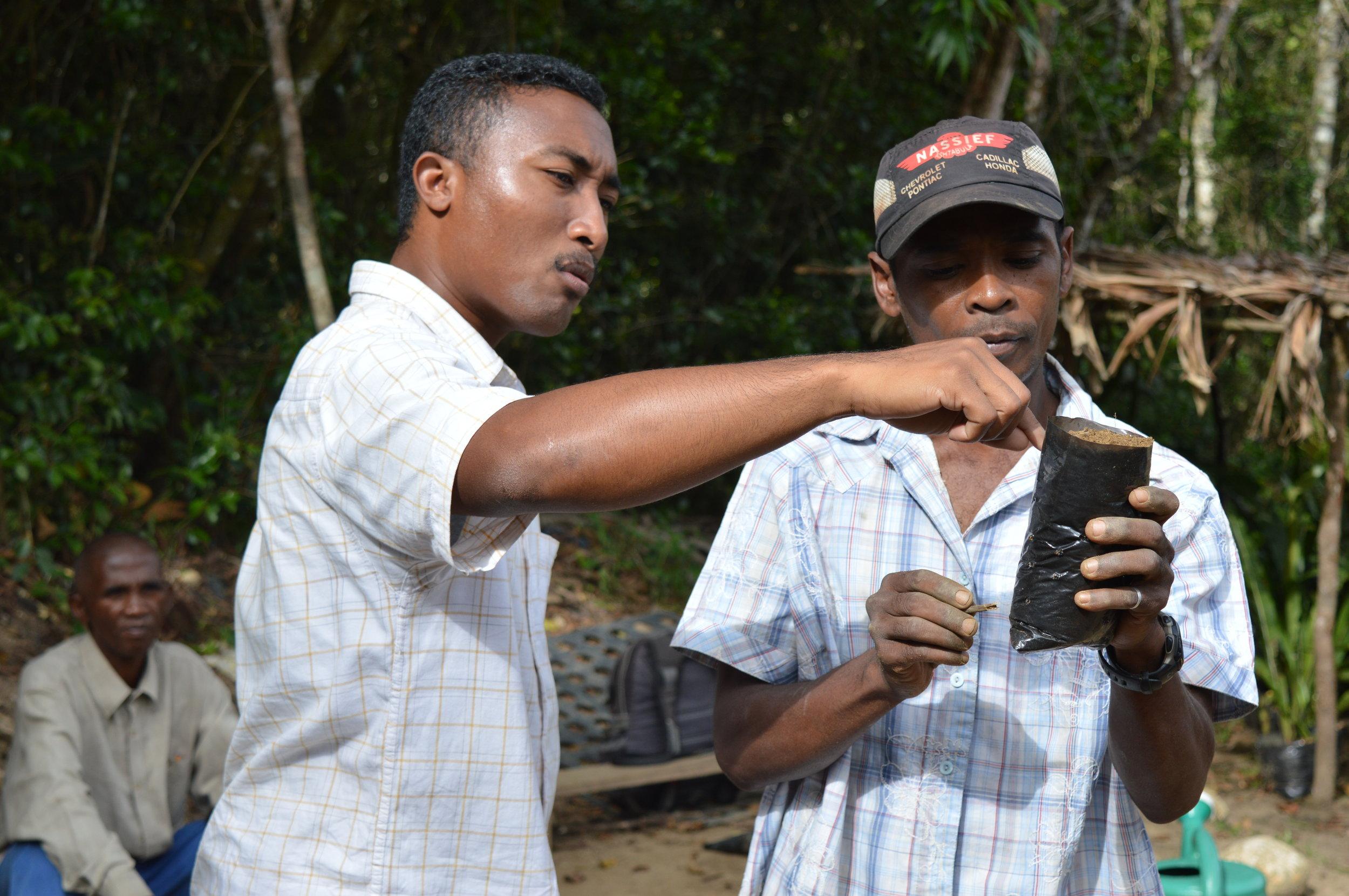 MRMW reforestation Nicola gdJPG.JPG