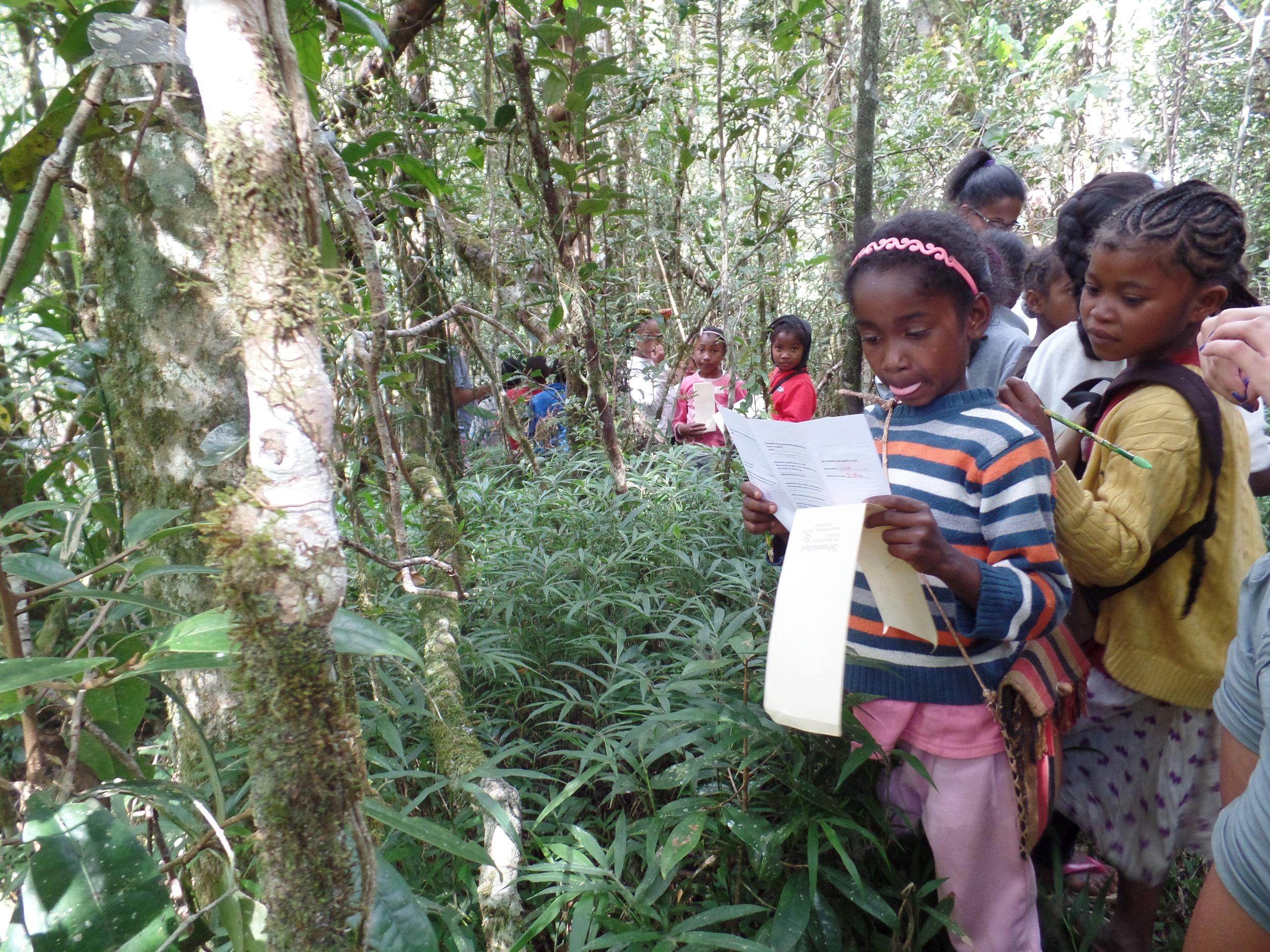 P.L.A.Y. Madagascar, Education