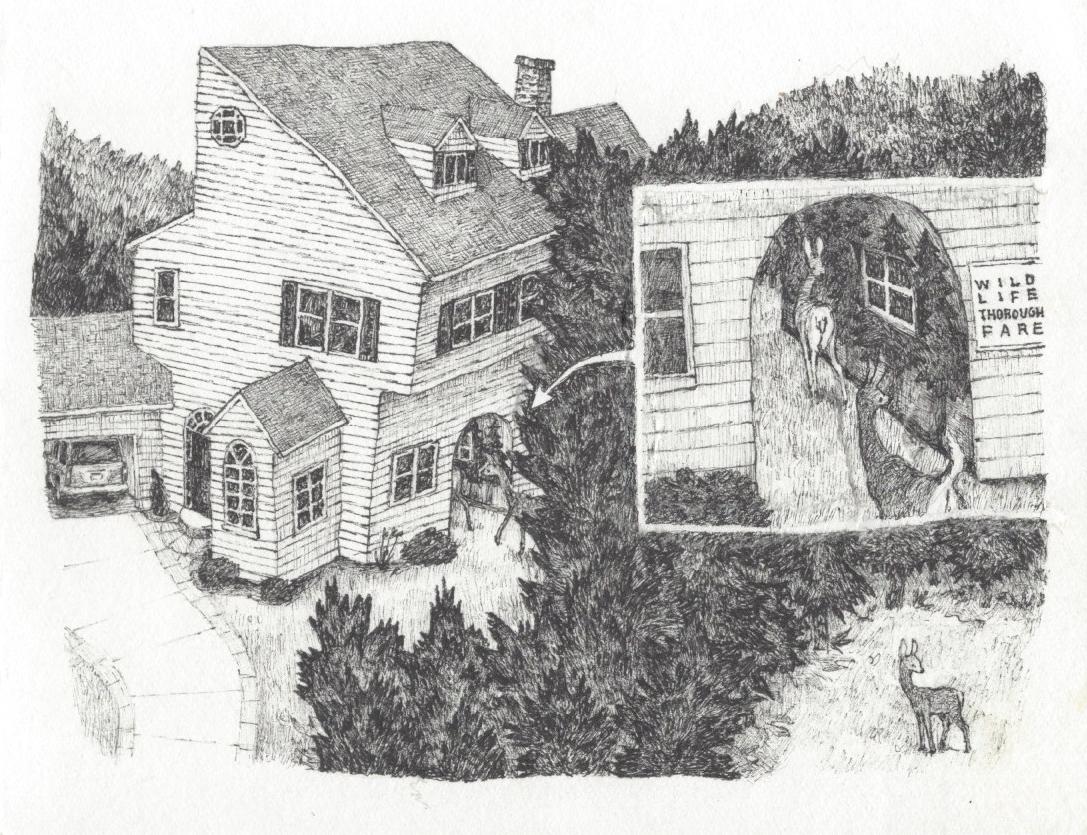 House Proposals 2 copy.jpg