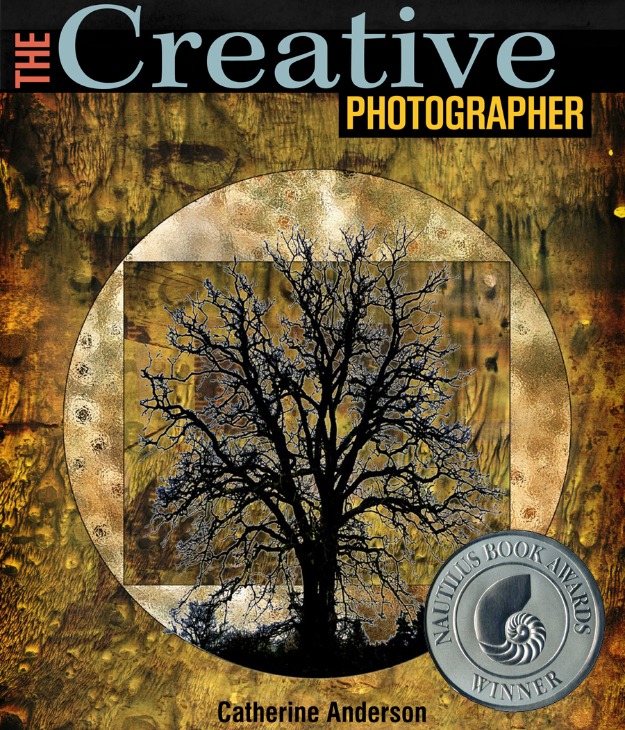 "Catherine's book ""The Creative Photographer"" received a 2012 Silver Nautilus Award in the Creative Process category"