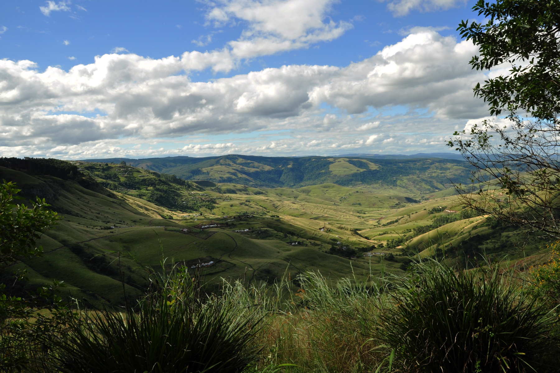 "The rolling hills of the Ixopo valley described by Alan Paton in ""Cry the Beloved Country"" like this: ""There is a lovely road that runs from Ixopo into the hills. These hills are grass-covered and rolling, and they are lovely beyond any signing of it."""