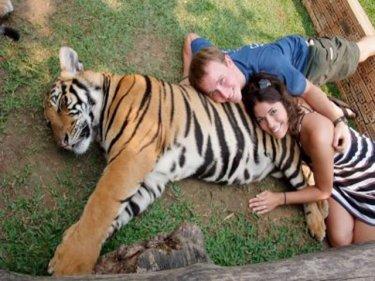 Photo from Tiger Kingdom
