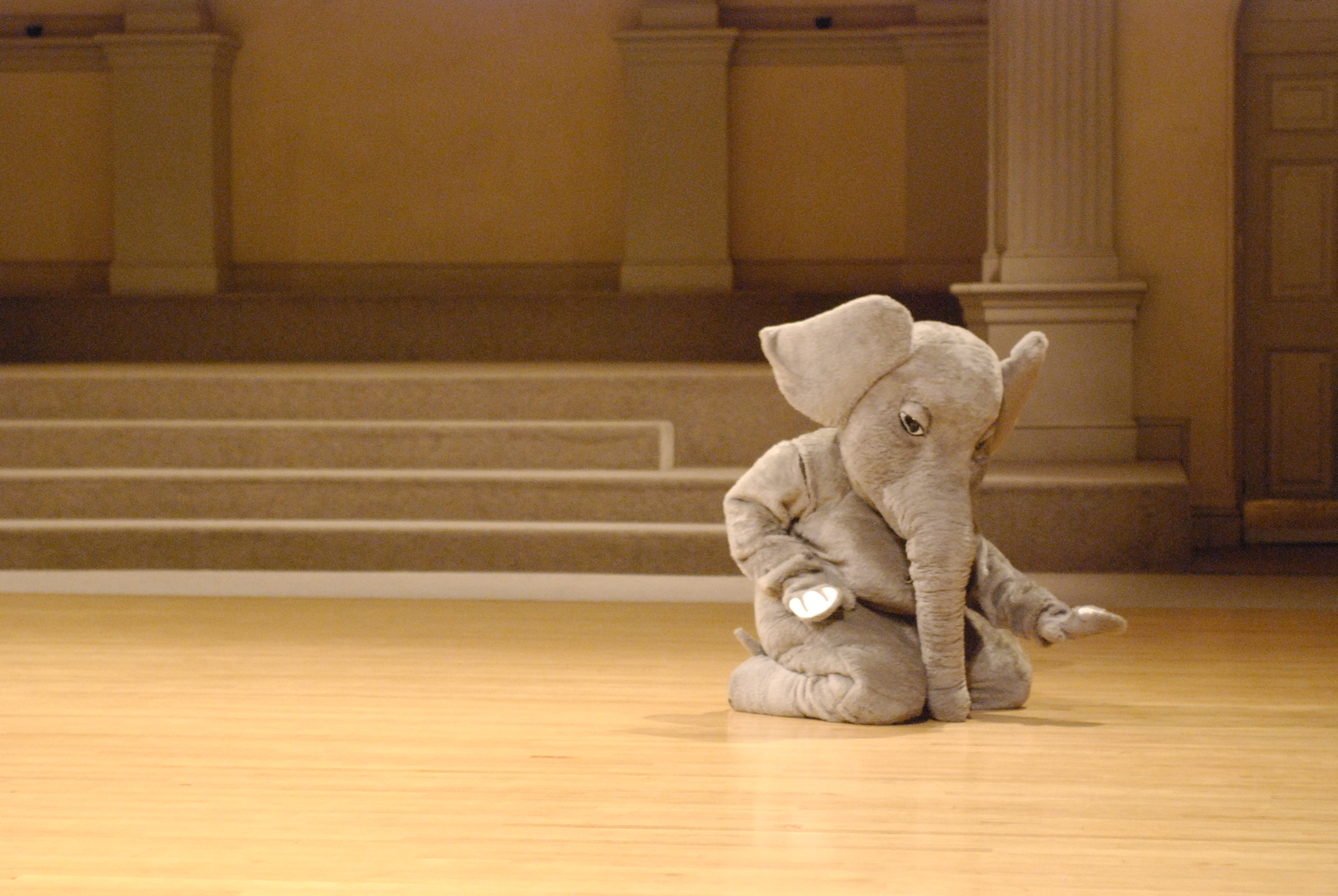 Lionel Popkin's There is an Elephant in This Dance