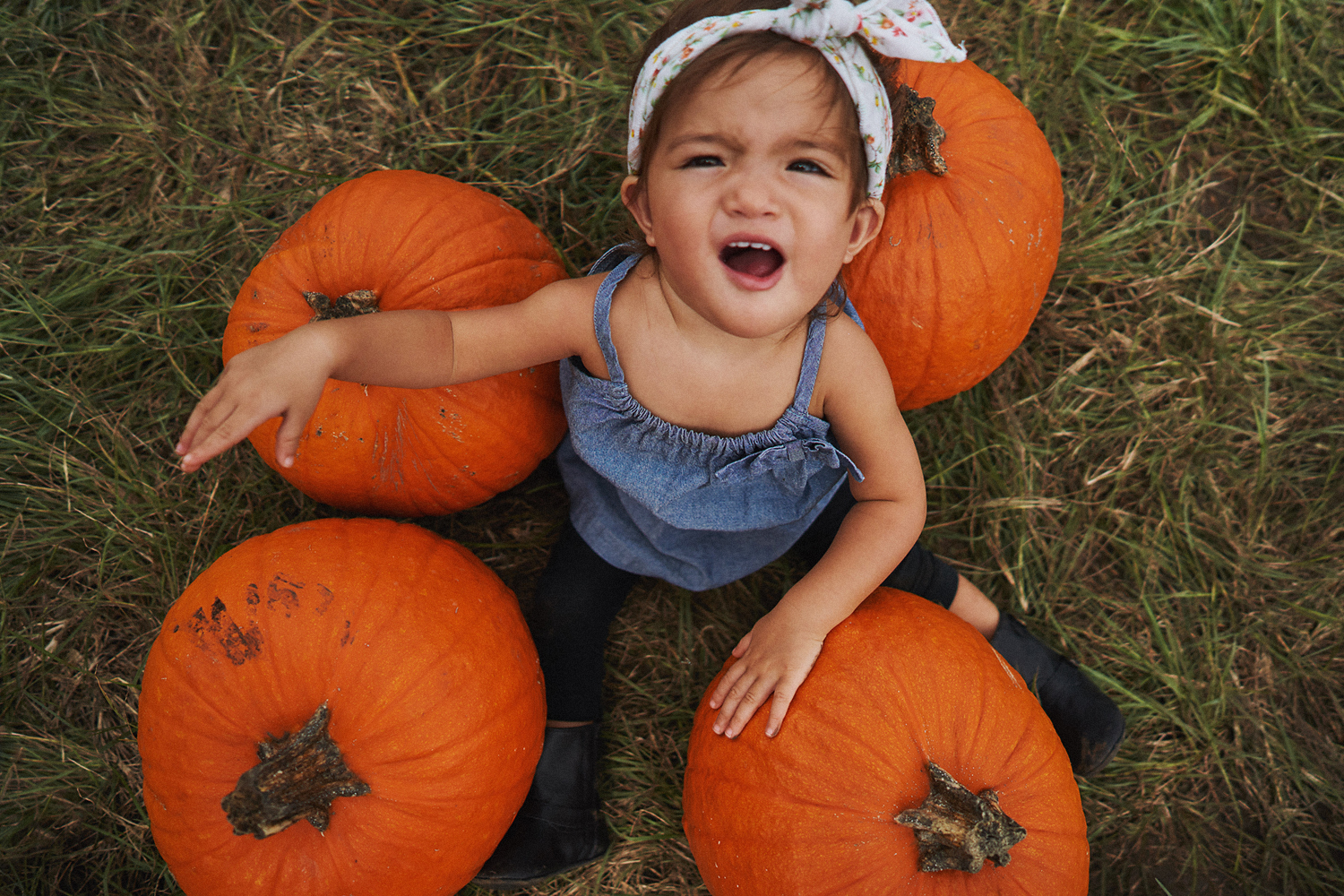 2018 Pumpkin Patch - 062 Edited Copy.jpg