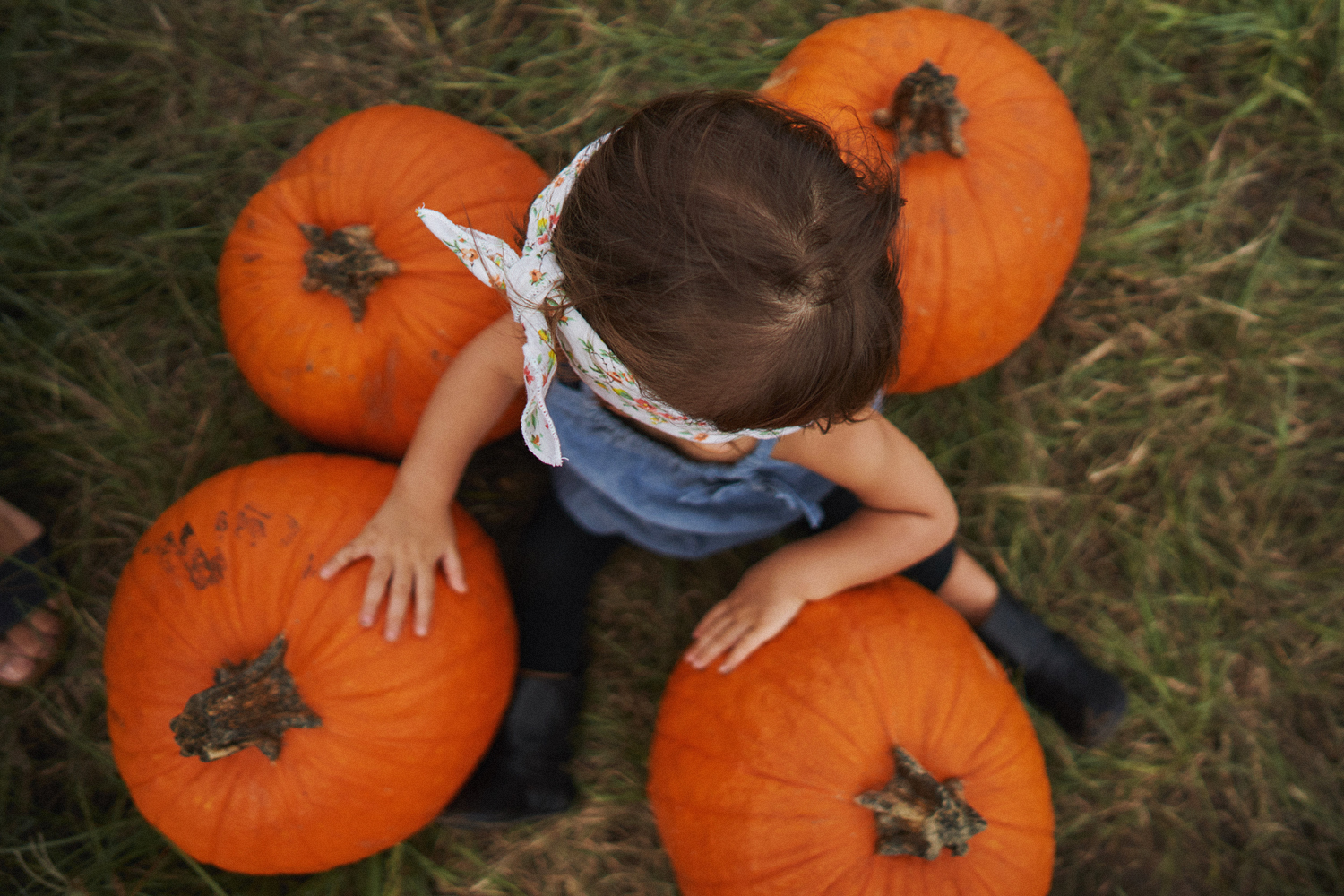 2018 Pumpkin Patch - 060 Edited Copy.jpg