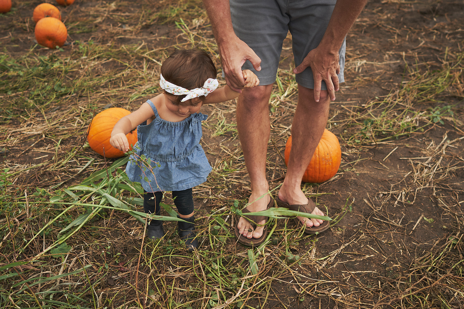 2018 Pumpkin Patch - 110 Edited Copy.jpg