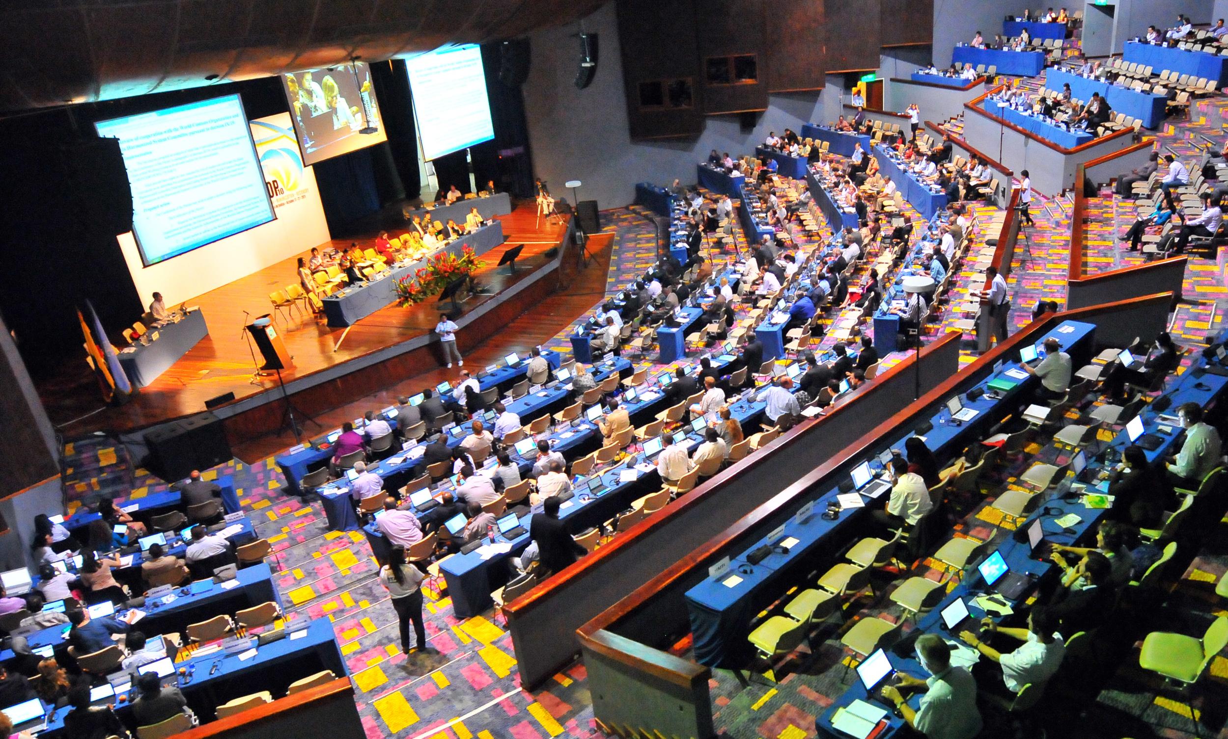 COP10-cartagena-plenary.jpg