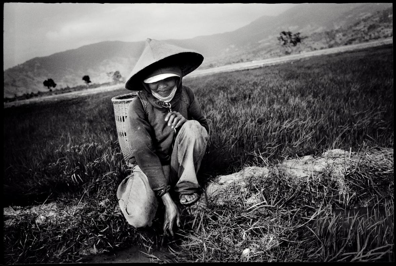Central Highlands. Vietnam.