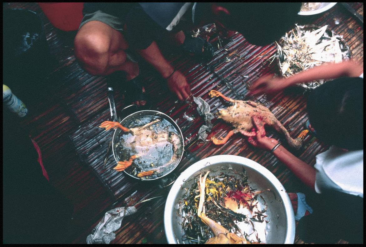Villagers skinning a chicken.