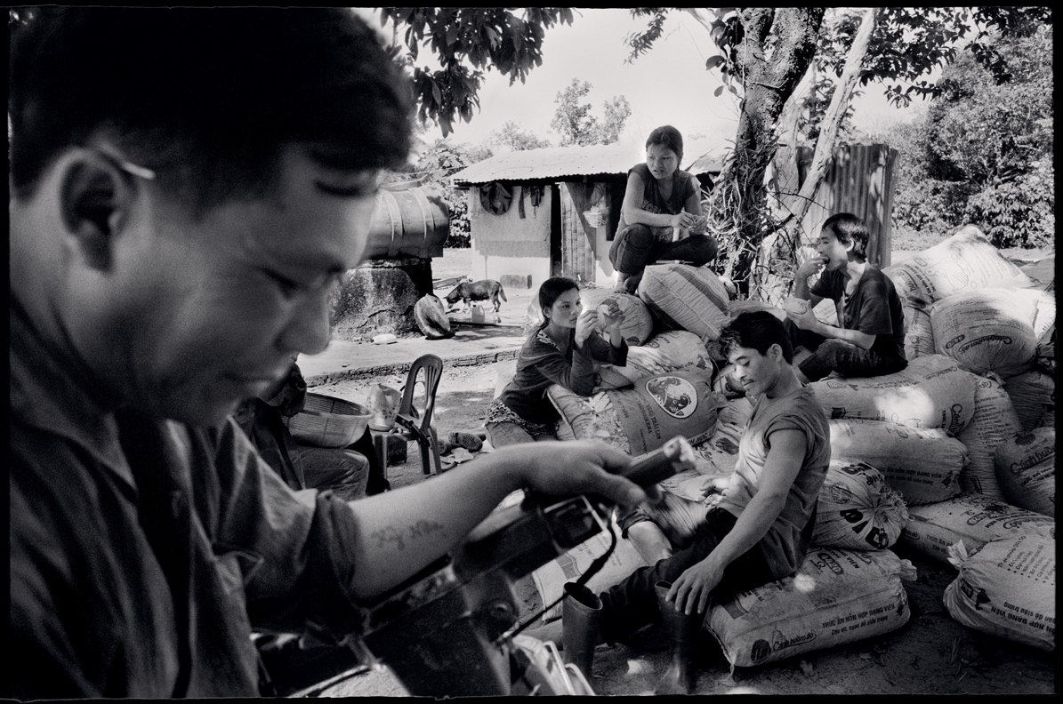 Coffee plantation workers. Central Highlands, Vietnam.