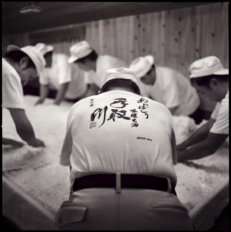 Preparing Koji rice in the early morning.