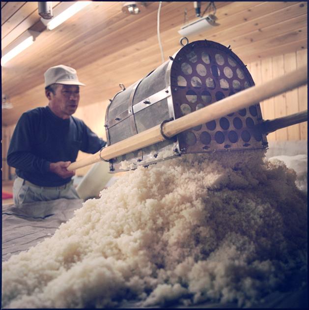 Preparing Koji rice.