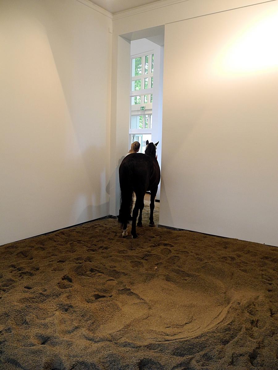 MC Krell - Oscar Santillan - Horse Morse, 2014 (c) Foto MC Krell (3).JPG