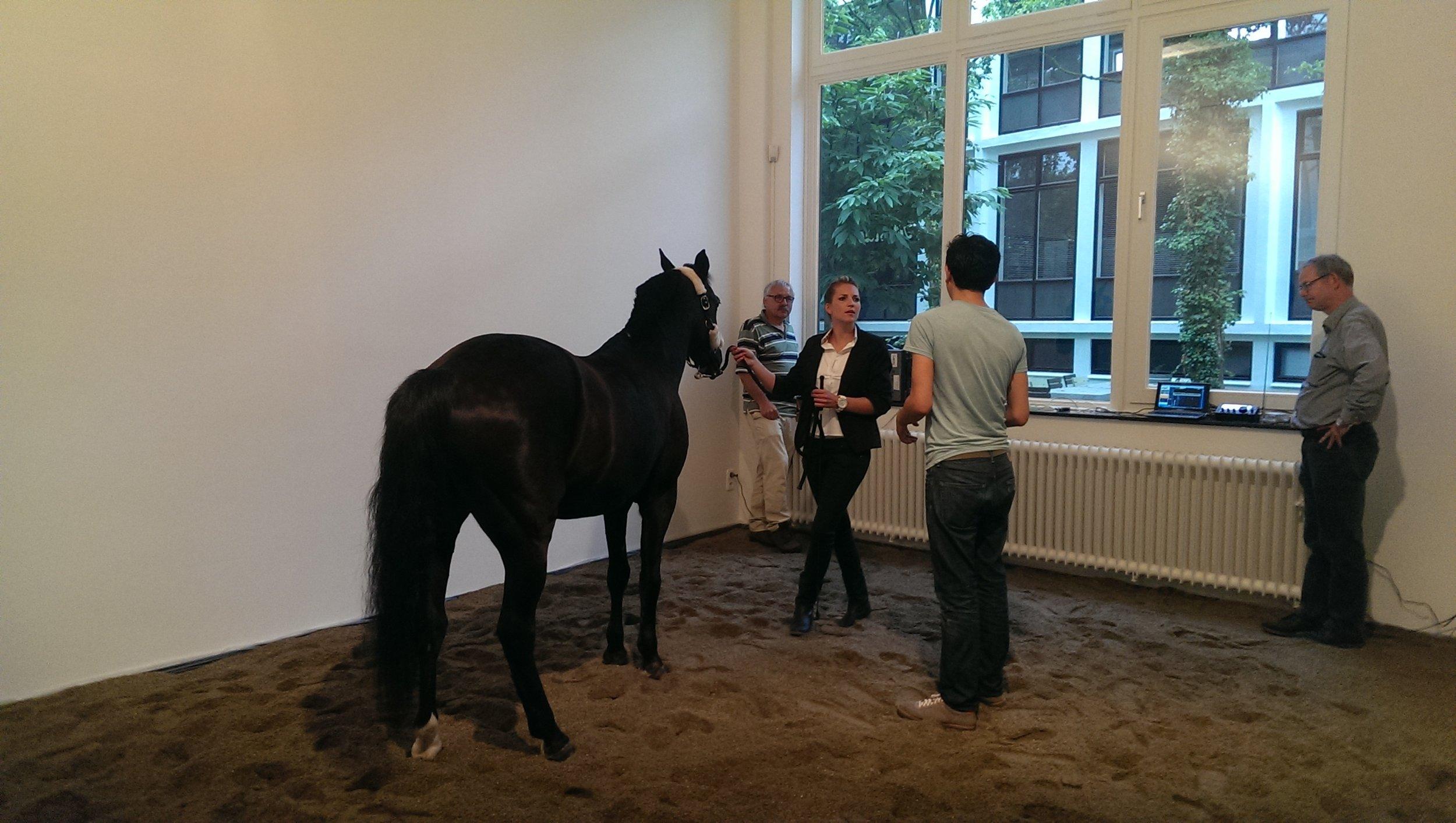 MC Krell - Oscar Santillan - Horse Morse, 2014 (c) Foto MC Krell (4).jpg