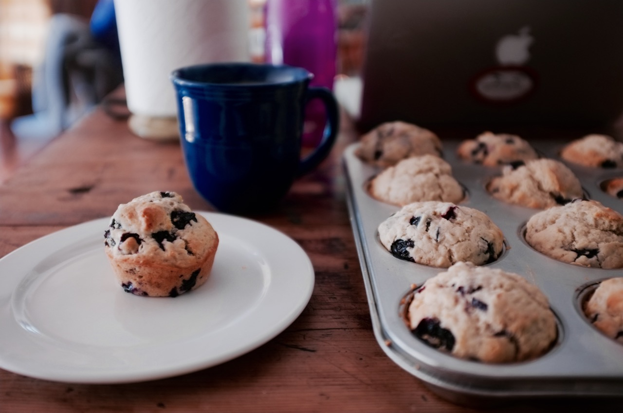 Make Anywhere Blueberry Muffins - Hill Reeves