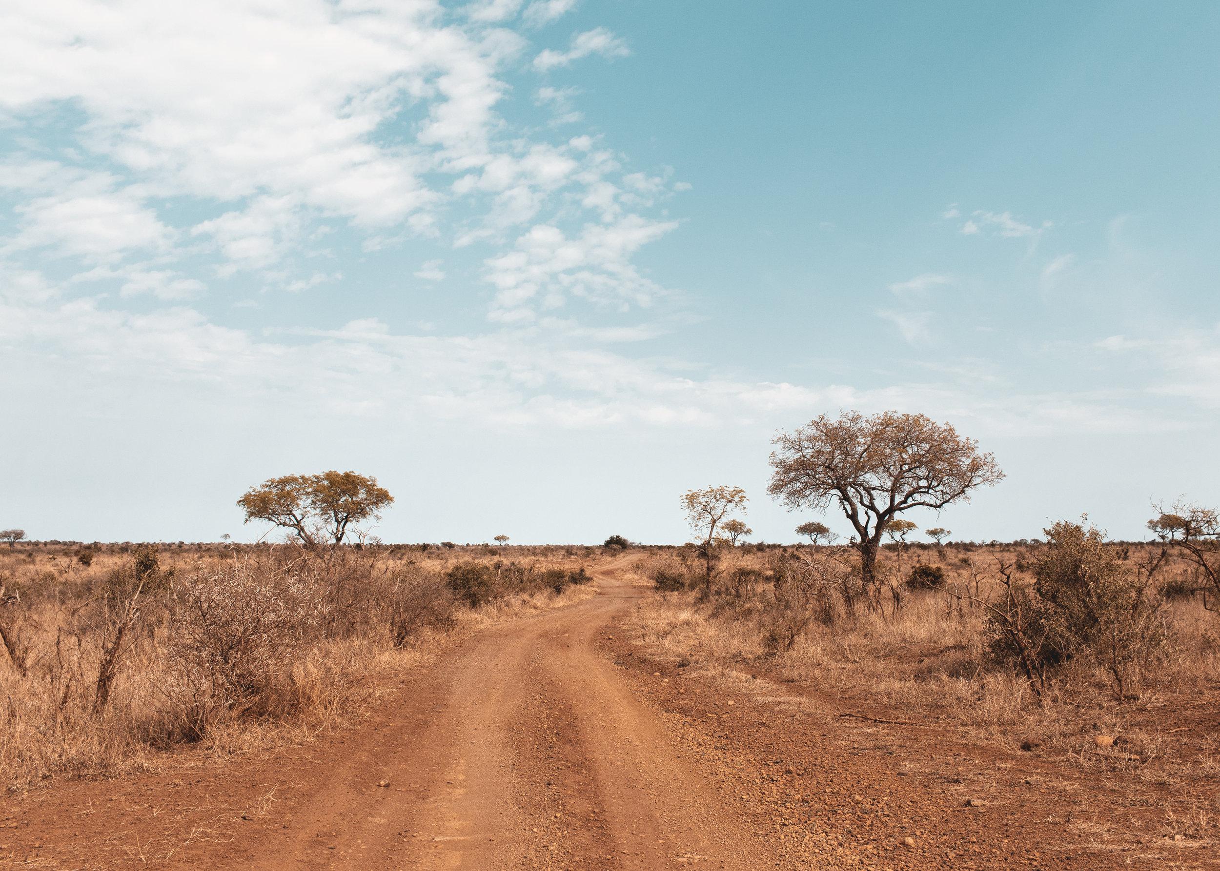 SOUTH AFRICA-9.jpg