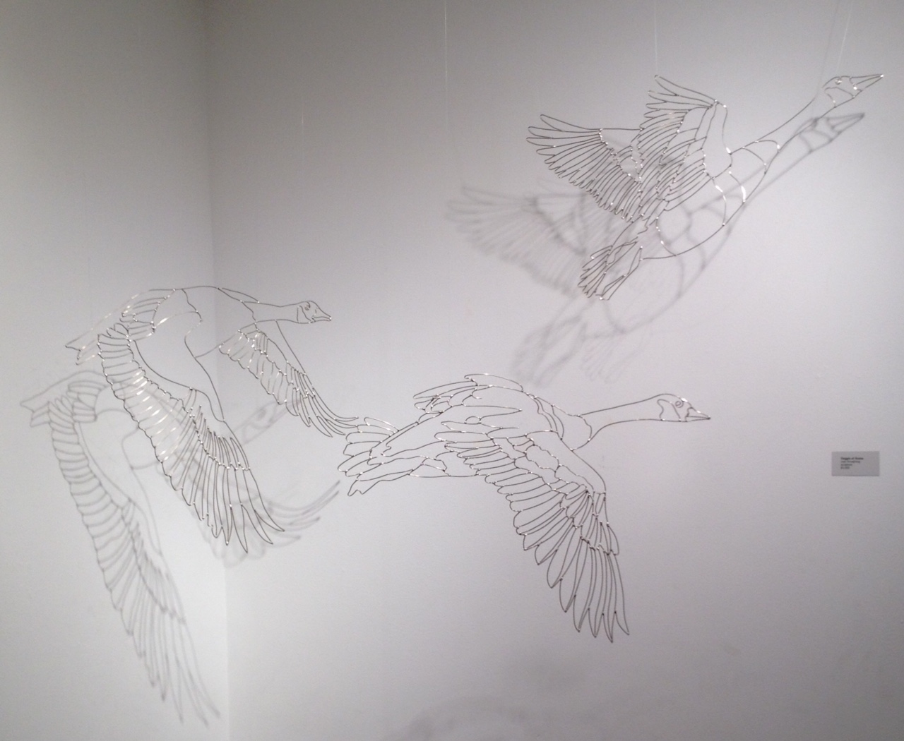 """18 """" nickel silver geese created for the show, Bird. Art: The Artist's Eye View of Birds"""