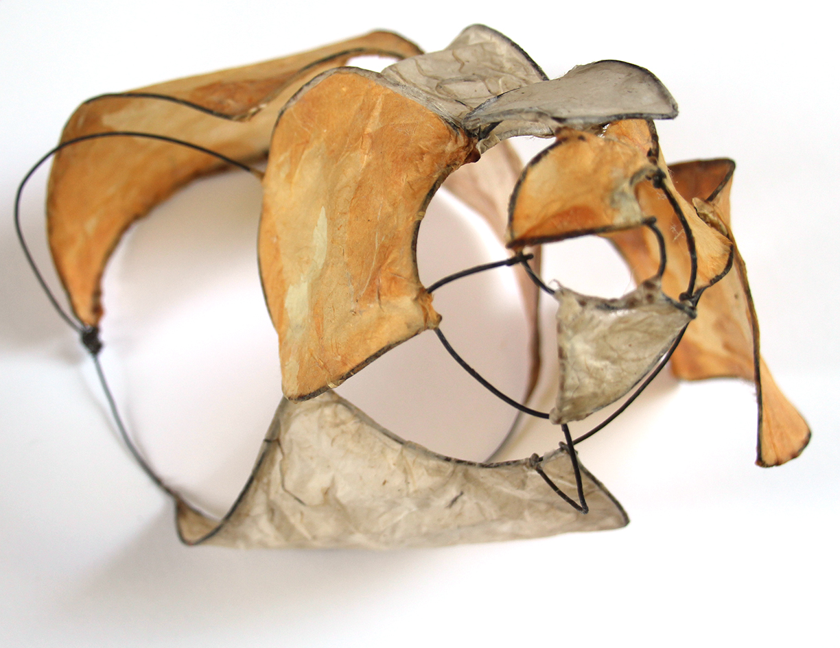 wire and paper shell
