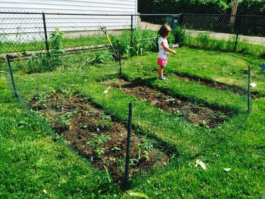 Our tiny backyard garden. The children love to plant and monitor the progress.