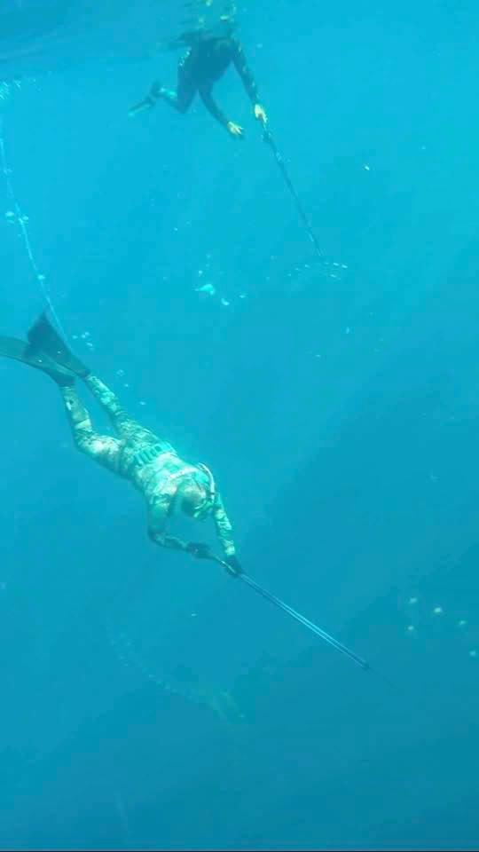 kingfishspear3.jpg