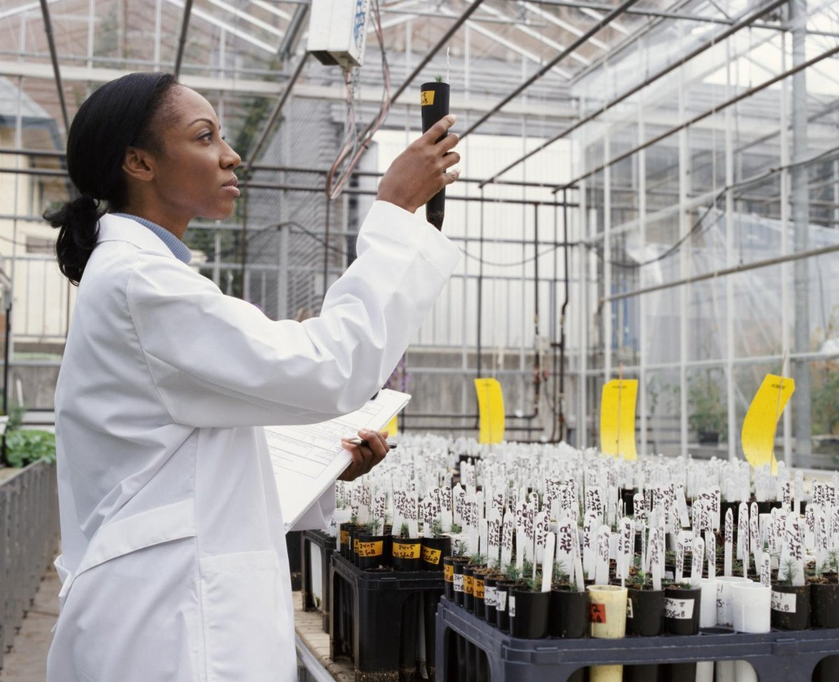 Report: Black Students Underrepresented in High-Paying STEM Majors (U.S. News and World Report)