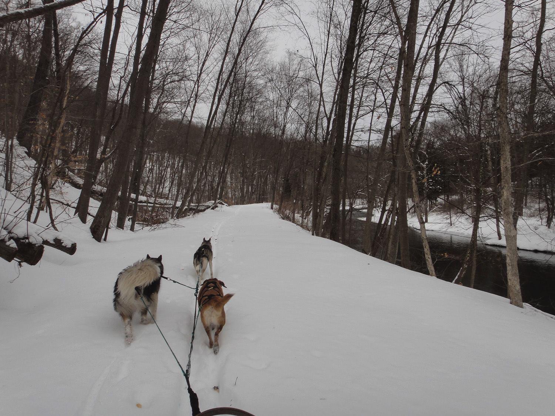 Mushing through deep snow along the Paulinskill Valley trail.