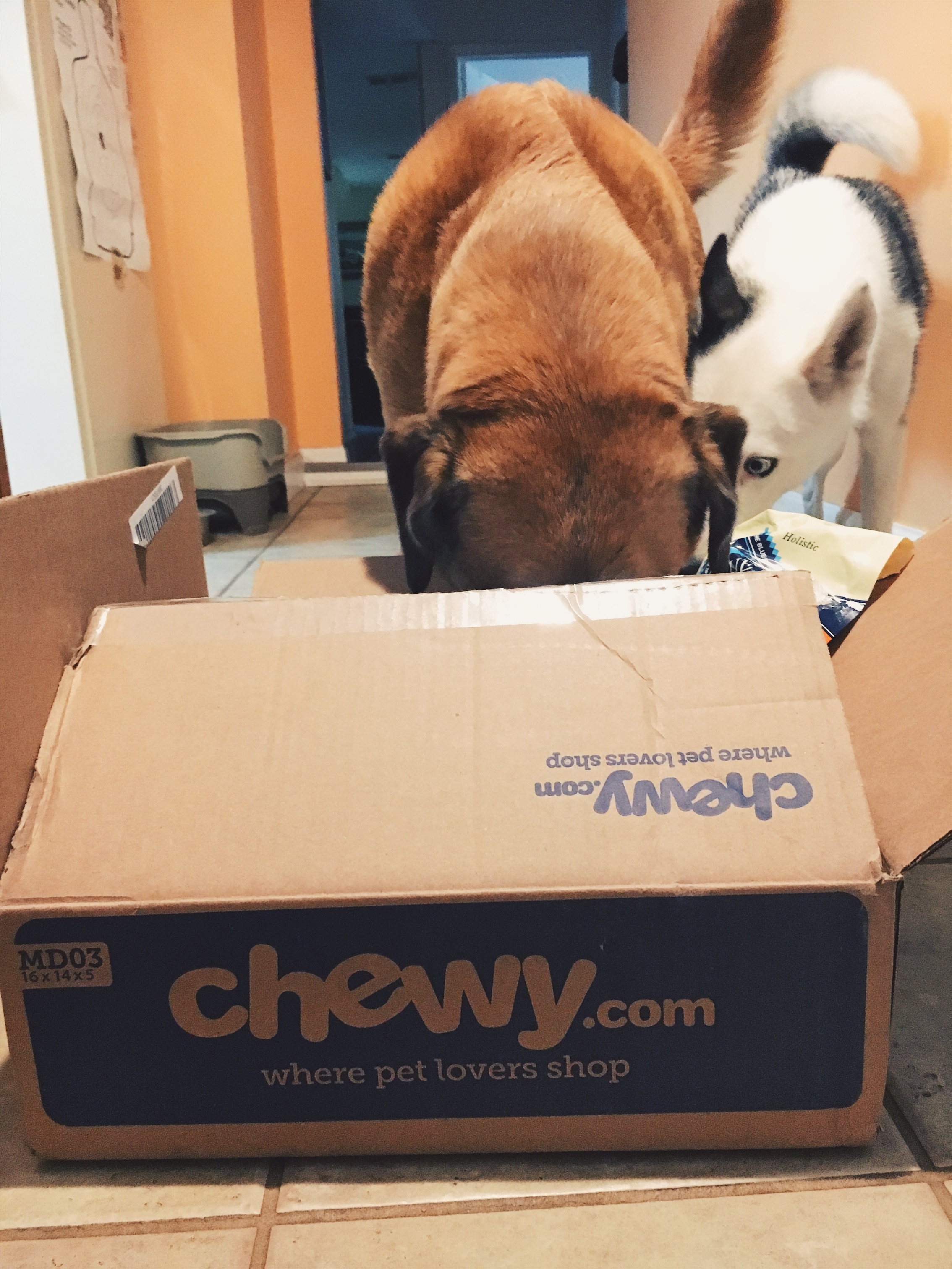 - *I received Taste of the Wild canned dog food free of charge from Chewy.com in an exchange for my honest review.