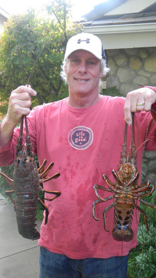 Lobsters taken in Malibu, California
