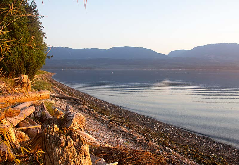 A warm setting sun illuminating the beach on Denman Island in front of the Rawganique Homestead