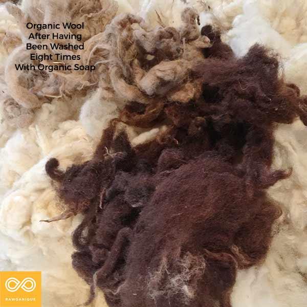 wool-IMG_6536-2.jpg