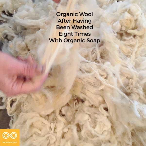 wool-IMG_6534-2.jpg