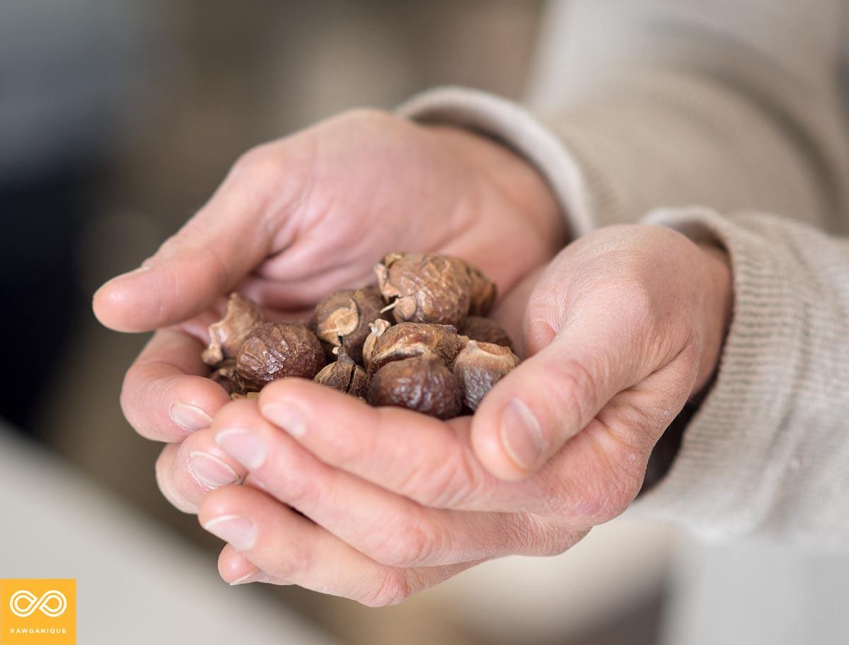 Himalayan Soap Nuts