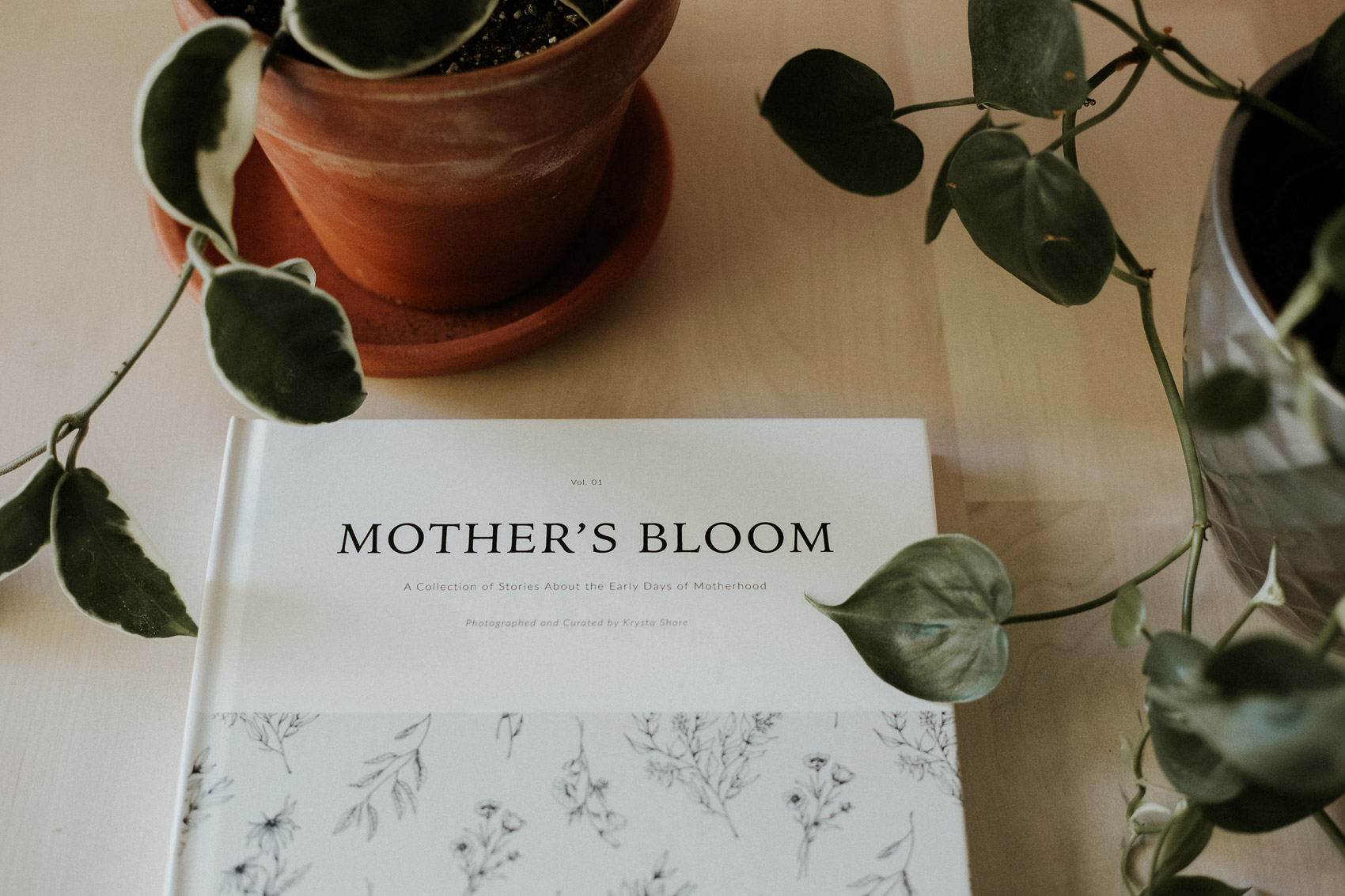 MothersBloomPromo-wr-6.jpg