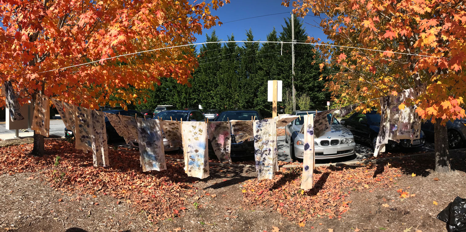 Fabrics-Drying-in-Fall.jpg