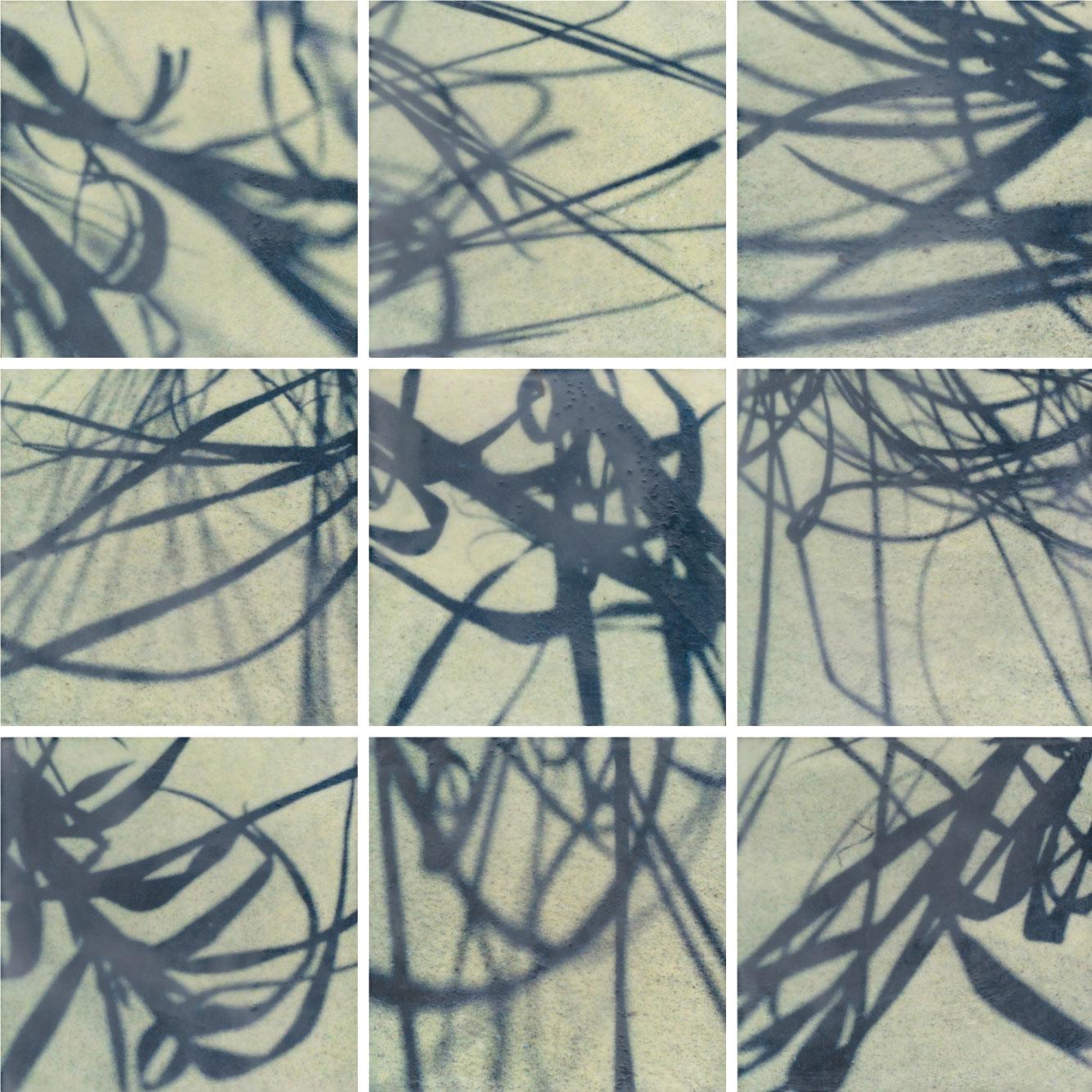 Erin-Keane_Shadow-Calligraphy.jpg